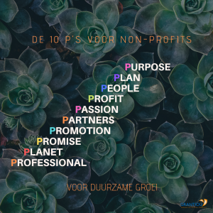 Duurzame organisatie ontwikkeling non-profits